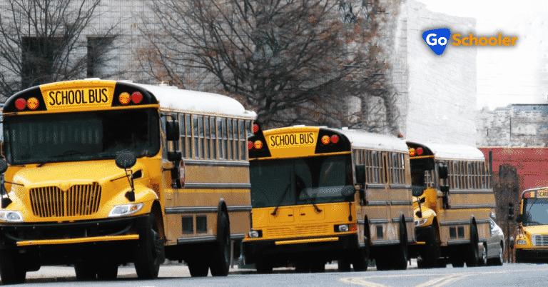 8 Best School Transport Management Systems
